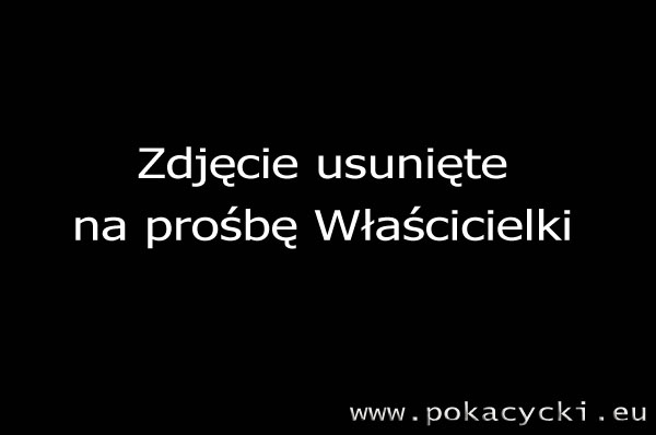 galeria foto. pokacycki.eu